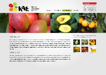 Kibbutz Agricultural Exports