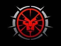 מיתוג Lion Team